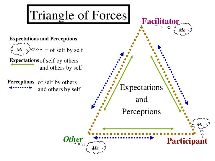 Expectations and Perceptions Facilitator Participant Other Expectations of self by others and others by self of self by ot...