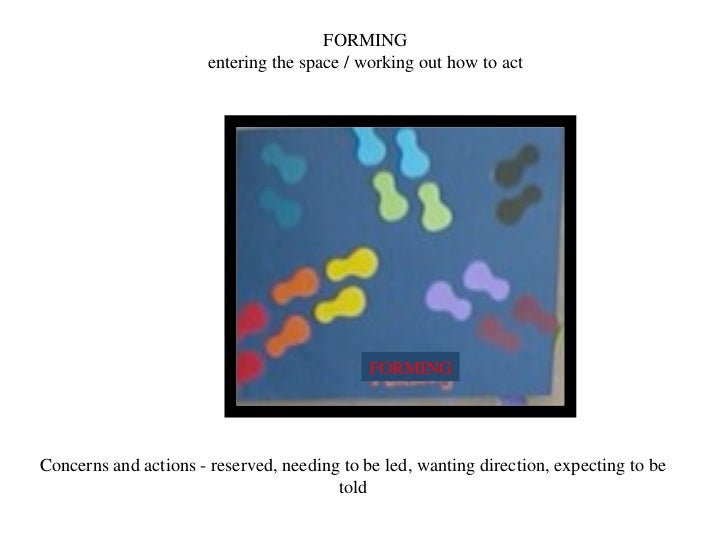 FORMING entering the space / working out how to act Concerns and actions - reserved, needing to be led, wanting direction,...