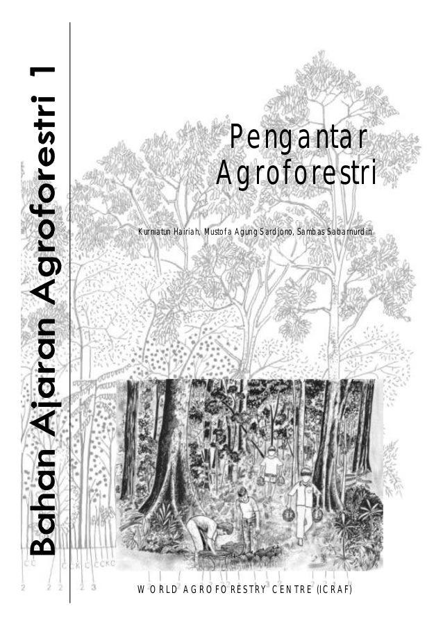 Pengantar Agroforestri Kurniatun Hairiah, Mustofa Agung Sardjono, Sambas Sabarnurdin WO RLD AGROFO RESTRY CENTRE (ICRAF)