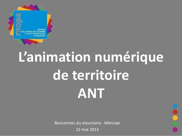 L'animation numériquede territoireANTRencontres du etourisme - Mimizan22 mai 2013