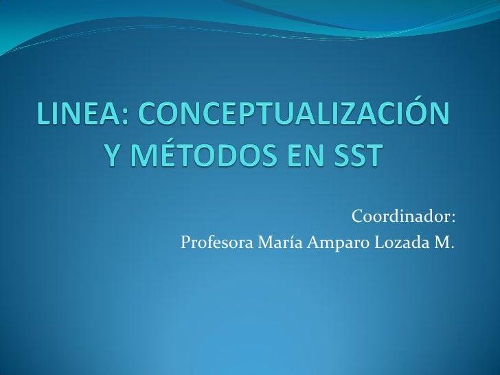 Coordinador:Profesora María Amparo Lozada M.