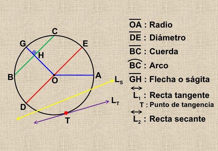 Líneas Asociadas A La Circunferencia