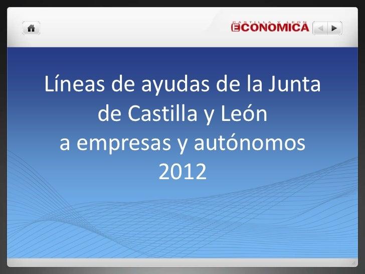 Líneas de ayudas de la Junta     de Castilla y León  a empresas y autónomos           2012