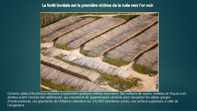 L'énorme désastre écologique du pétrole bitumeux Slide 2