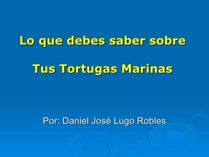 Lo  que   debes  saber sobre  Tus Tortugas Marinas   Por: Daniel José Lugo Robles