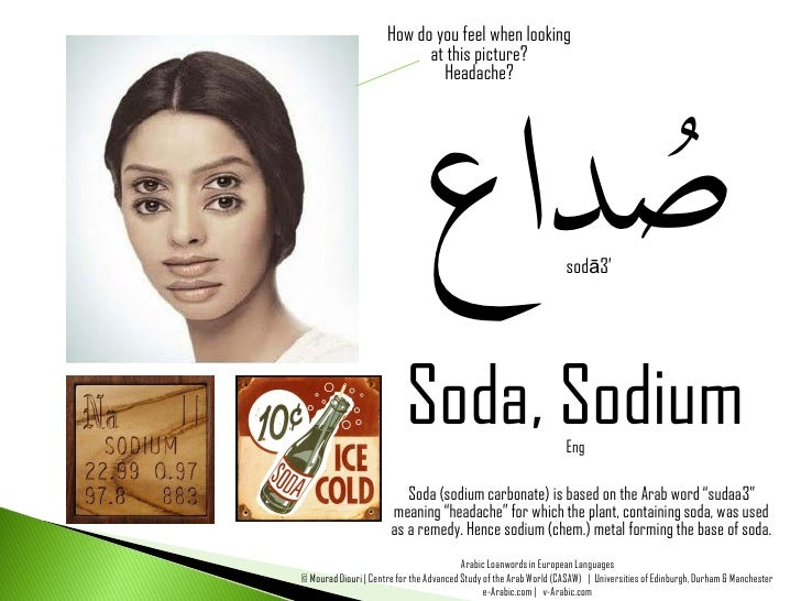 You Already Speak Arabic! : Arabic Loanwords in European