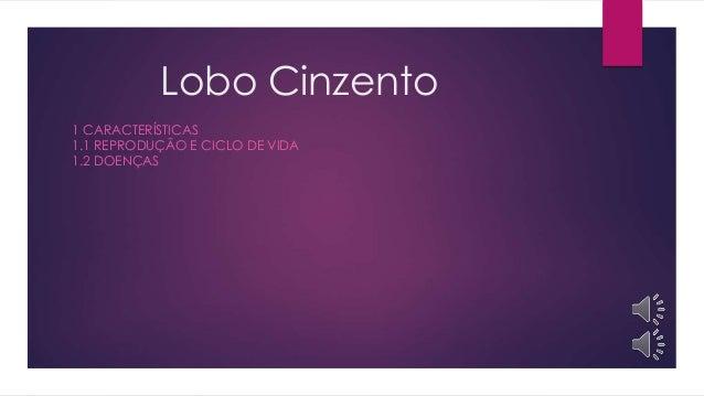 Lobo Cinzento 1 CARACTERÍSTICAS 1.1 REPRODUÇÃO E CICLO DE VIDA 1.2 DOENÇAS