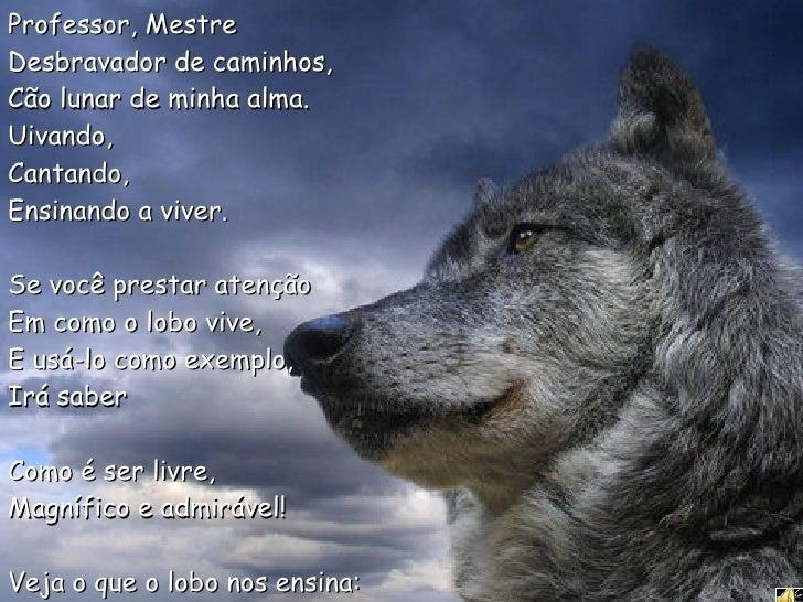 Professor, Mestre Desbravador de caminhos,  Cão lunar de minha alma.  Uivando,  Cantando,  Ensinando a viver. Se você pres...