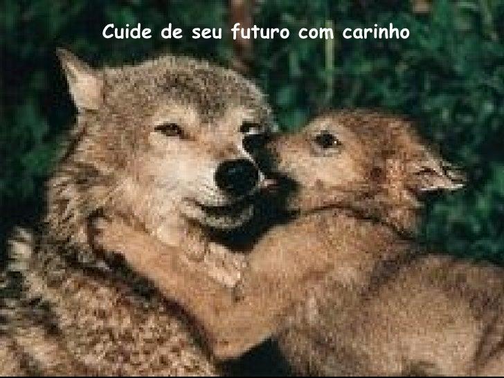 Cuide de seu futuro com carinho
