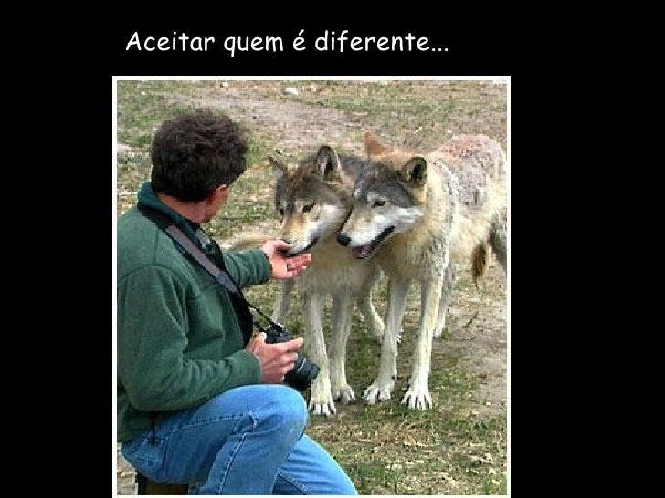 Aceitar quem é diferente...