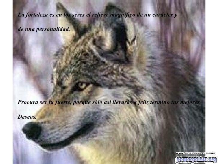 La fortaleza es en los seres el relieve magnífico de un carácter y  de una personalidad. Procura ser tu fuerte, porque sól...