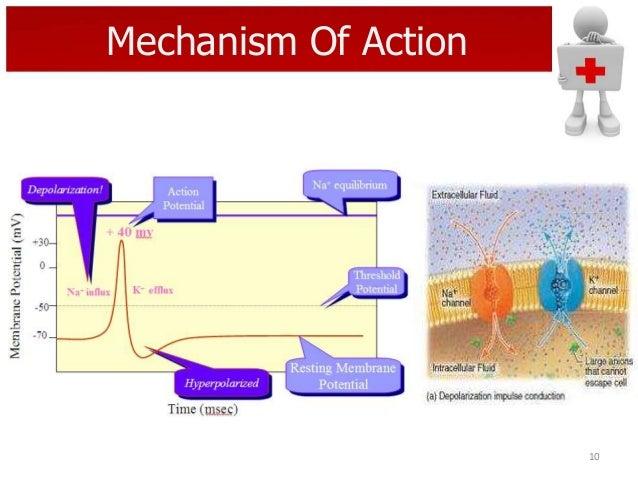 Mechanism Of Action  10