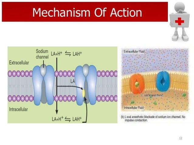 Mechanism Of Action  12