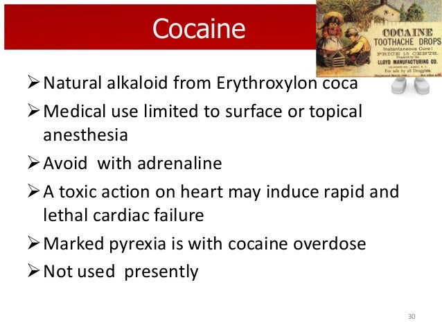 Cocaine Natural alkaloid from Erythroxylon coca Medical use limited to surface or topical anesthesia Avoid with adrenal...