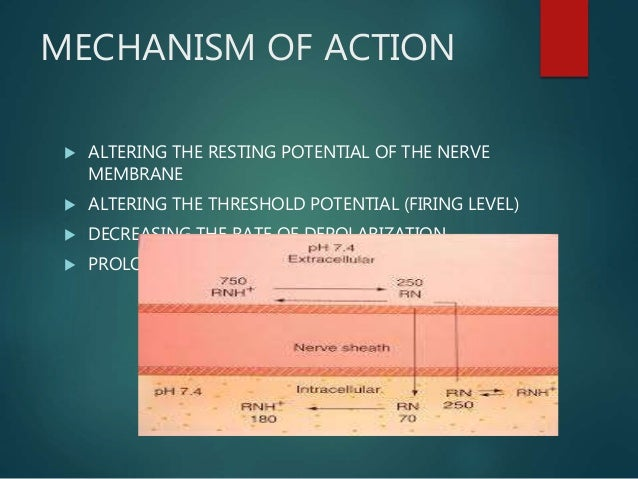 MECHANISM OF ACTION  ALTERING THE RESTING POTENTIAL OF THE NERVE MEMBRANE  ALTERING THE THRESHOLD POTENTIAL (FIRING LEVE...
