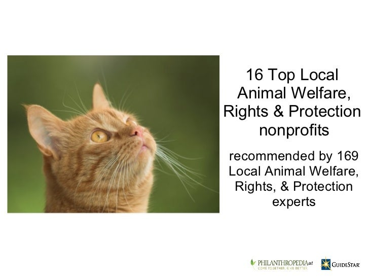 recommended by 169 Local Animal Welfare, Rights, & Protection experts 16 Top Local  Animal Welfare, Rights & Protection  n...