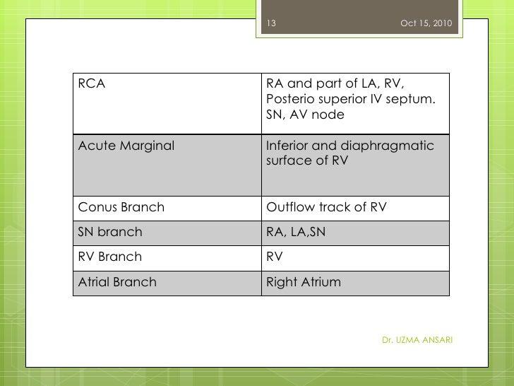 Dr. UZMA ANSARI Oct 15, 2010 RCA RA and part of LA, RV, Posterio superior IV septum. SN, AV node Acute Marginal Inferior a...