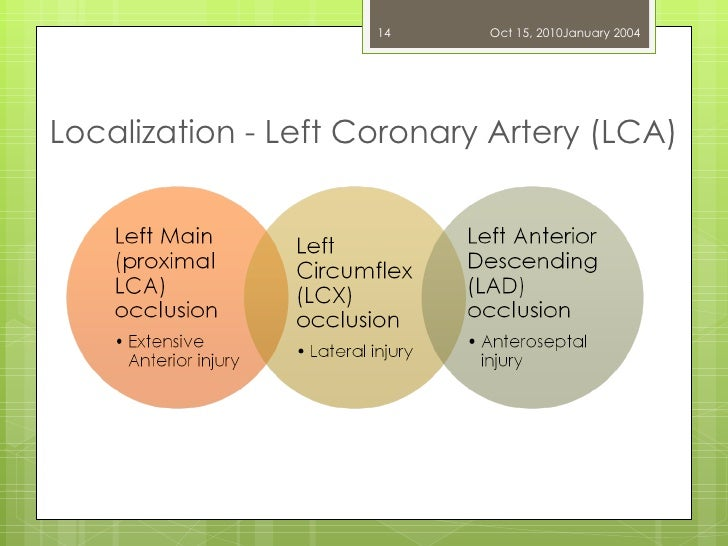 Localization - Left Coronary Artery (LCA) Dr. UZMA ANSARI Oct 15, 2010 January 2004