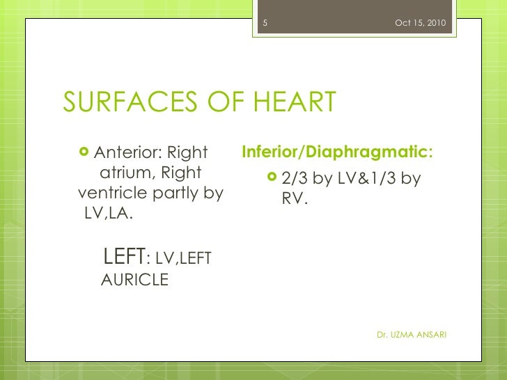 SURFACES OF HEART <ul><li>Anterior: Right atrium, Right ventricle partly by LV,LA.   LEFT : LV,LEFT  AURICLE   </li></ul><...