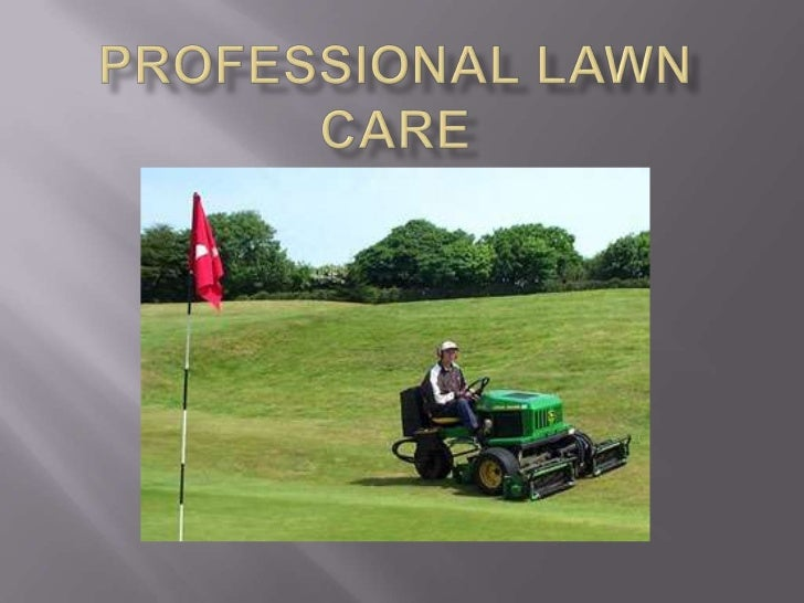 PROFESSIONAL Lawn care<br />