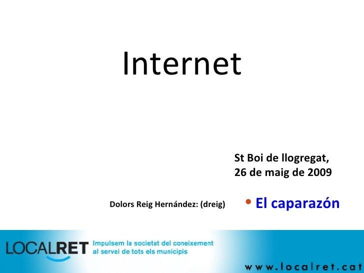 Internet Dolors Reig Hernández: (dreig)  <ul><li>El caparazón </li></ul>St Boi de llogregat,  26 de maig de 2009