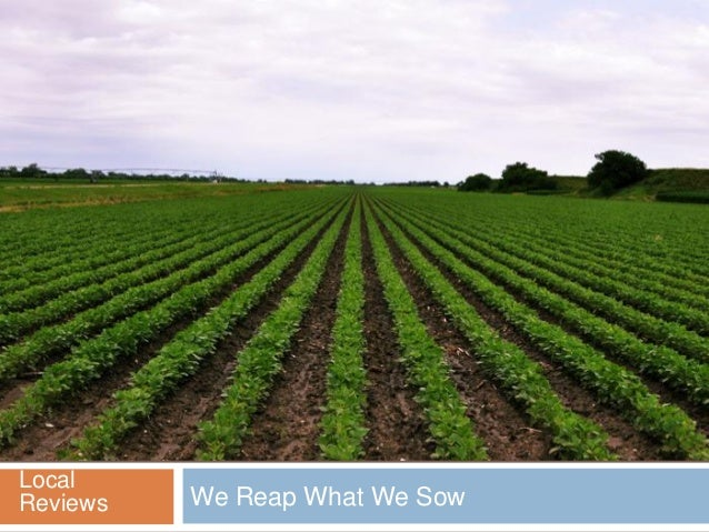 We Reap What We SowLocalReviews