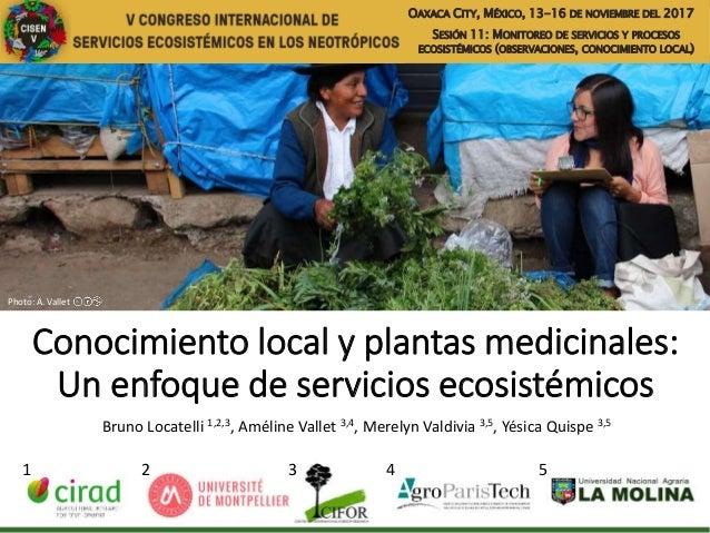 Conocimiento local y plantas medicinales: Un enfoque de servicios ecosistémicos Bruno Locatelli 1,2,3, Améline Vallet 3,4,...