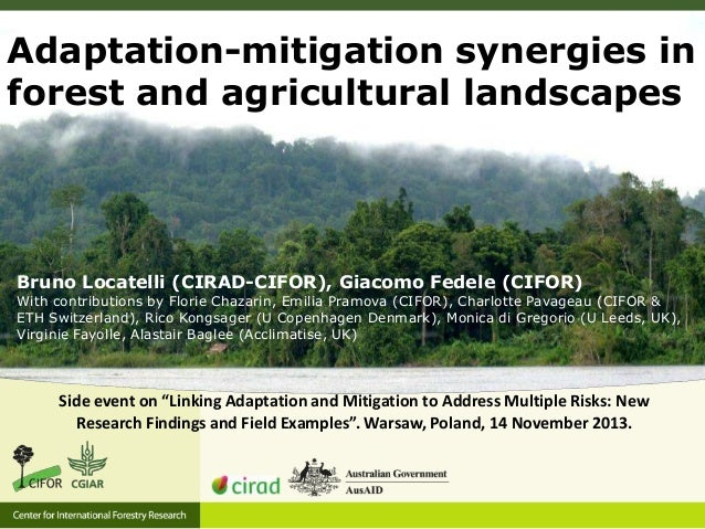 Adaptation-mitigation synergies in forest and agricultural landscapes  Bruno Locatelli (CIRAD-CIFOR), Giacomo Fedele (CIFO...