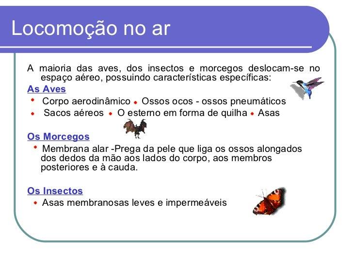 Locomoção no ar <ul><li>A maioria das aves, dos insectos e morcegos deslocam-se no espaço aéreo, possuindo características...