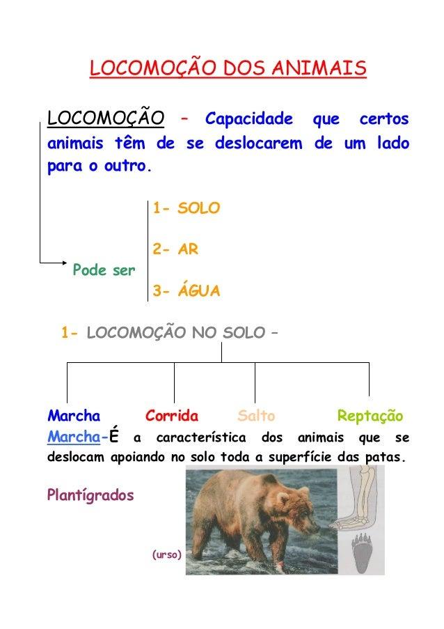 LOCOMOÇÃO DOS ANIMAIS  LOCOMOÇÃO – Capacidade que certos animais têm de se deslocarem de um lado para o outro.  1- SOLO  2...