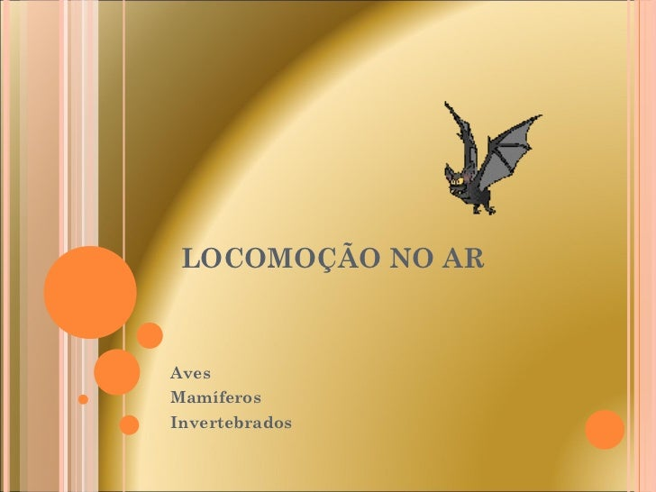 LOCOMOÇÃO NO AR Aves Mamíferos Invertebrados