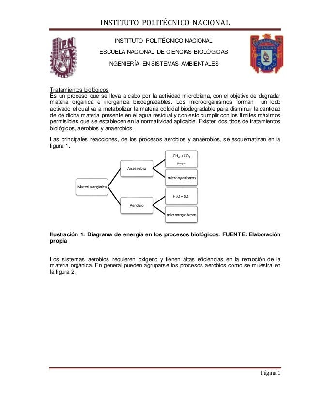INSTITUTO POLITÉCNICO NACIONAL Página 1 INSTITUTO POLITÉCNICO NACIONAL ESCUELA NACIONAL DE CIENCIAS BIOLÓGICAS INGENIERÍA ...