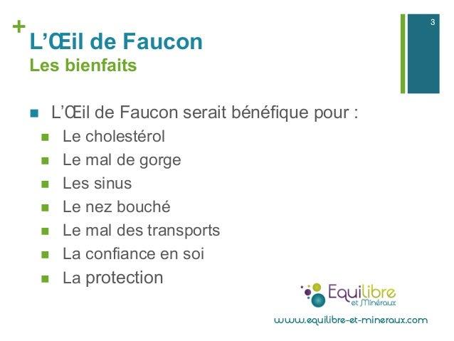 + L'Œil de Faucon Les bienfaits n L'Œil de Faucon serait bénéfique pour : n Le cholestérol n Le mal de gorge n Les...