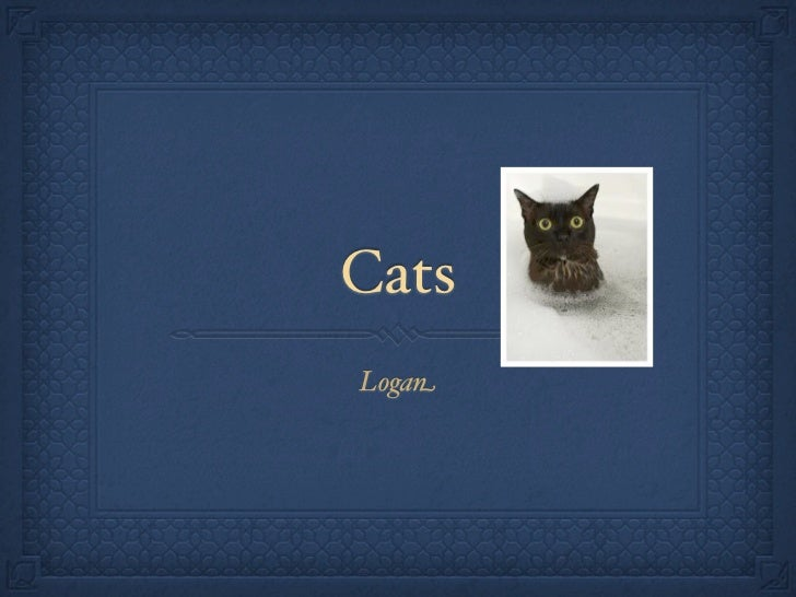 CatsLogan