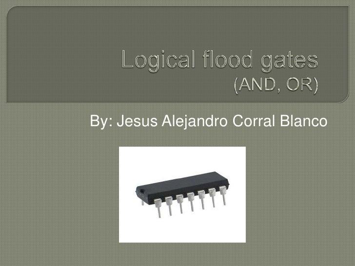 By: Jesus Alejandro Corral Blanco<br />