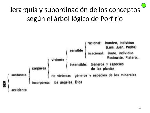 Image result for porfirio logica