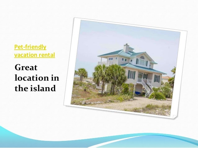 Lollygaggin' st  george island beach view vacation rental