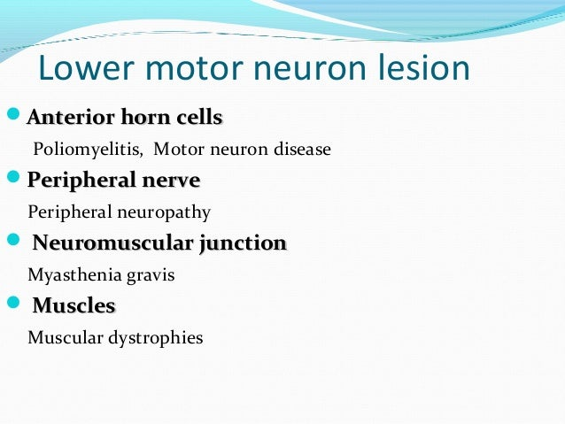 Int Med Motor Symptoms From Sims Lahore