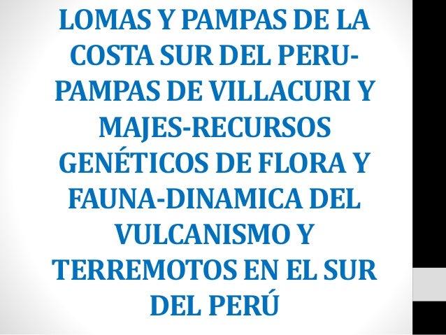 LOMAS Y PAMPAS DE LA COSTA SUR DEL PERU- PAMPAS DE VILLACURI Y MAJES-RECURSOS GENÉTICOS DE FLORA Y FAUNA-DINAMICA DEL VULC...