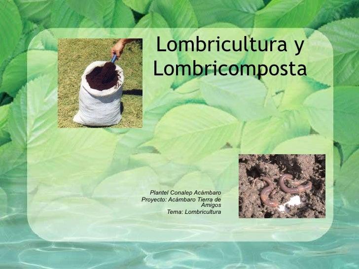 Lombricultura y Lombricomposta Plantel Conalep Acámbaro Proyecto: Acámbaro Tierra de Amigos Tema: Lombricultura