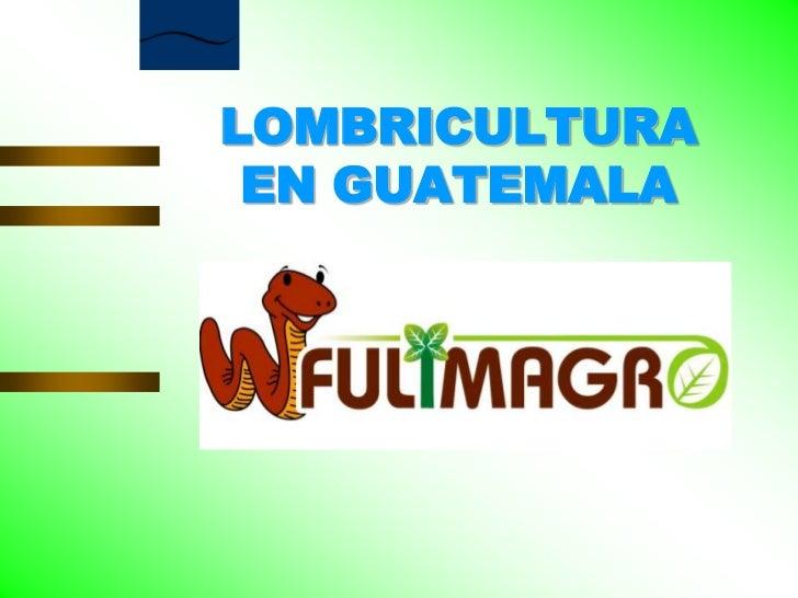 LOMBRICULTURA<br />EN GUATEMALA<br />