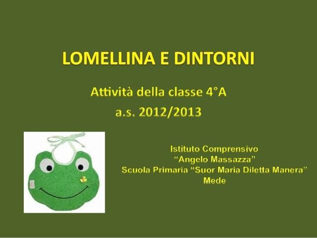 La Lomellina è una parte della Pianura Padana nella zona sud-occidentale della Lombardia tra il Sesia ad ovest, il Po ad o...