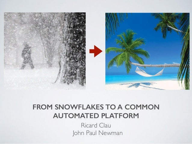 FROM SNOWFLAKES TO A COMMON AUTOMATED PLATFORM Ricard Clau John Paul Newman