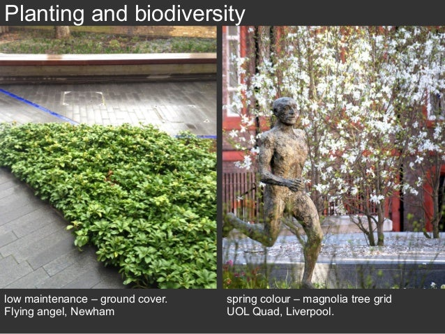 London S Green Spaces Pocket Parks The Design Challenge