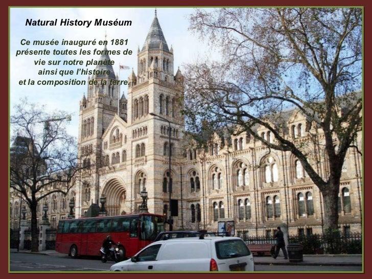 Natural History Muséum Ce musée inauguré en 1881 présente toutes les formes de vie sur notre planète ainsi que l'histoire ...