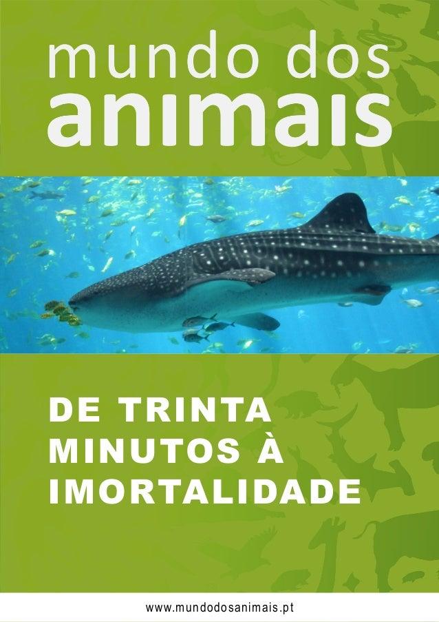 DE TRINTA MINUTOS À IMORTALIDADE www.mundodosanimais.pt
