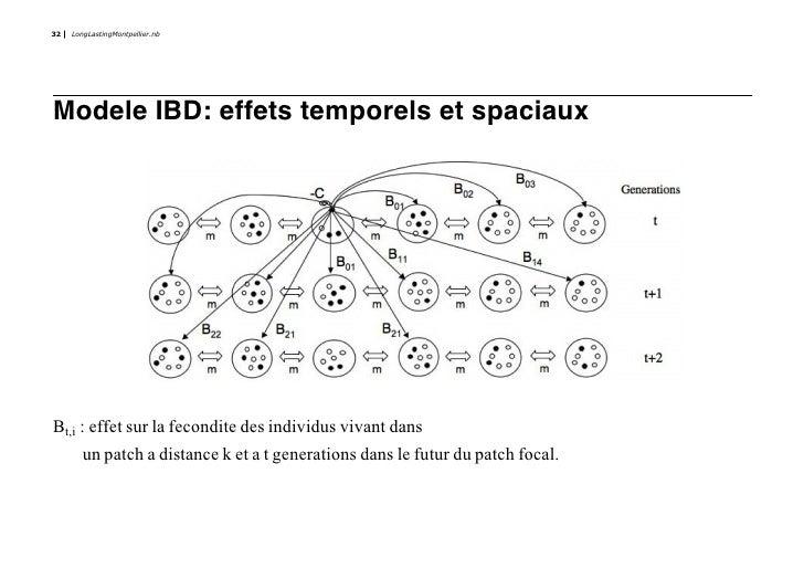 32   LongLastingMontpellier.nb     Modele IBD: effets temporels et spaciaux     Bt,i : effet sur la fecondite des individu...