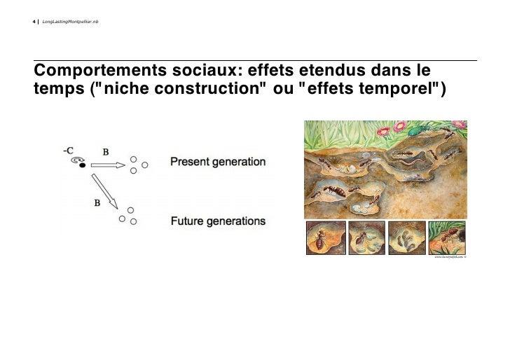 """4   LongLastingMontpellier.nb     Comportements sociaux: effets etendus dans le temps (""""niche construction"""" ou """"effets tem..."""