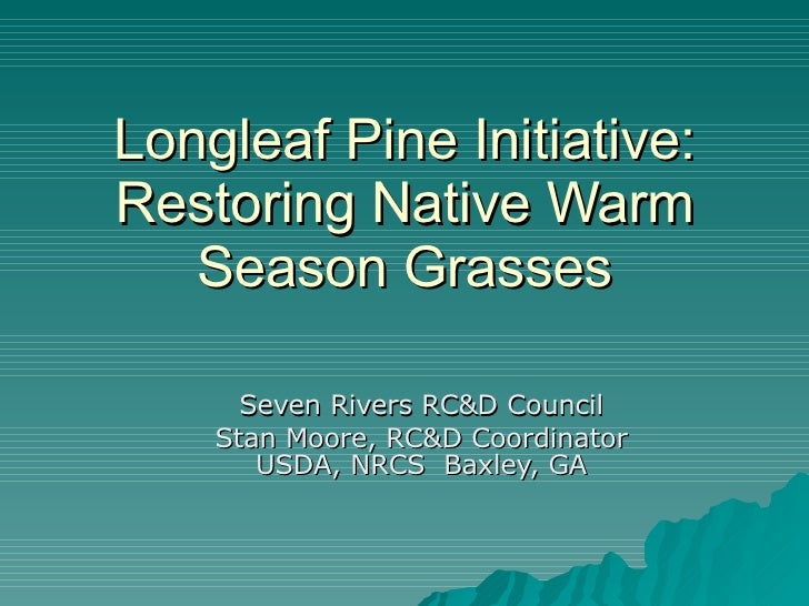 Longleaf Pine Initiative: Restoring Native Warm Season Grasses Seven Rivers RC&D Council Stan Moore, RC&D Coordinator USDA...
