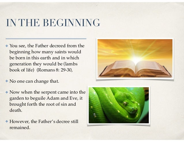 INTHE BEGINNING ✤ You see, the Father decreed from the beginning how many saints would be born in this earth and in which ...